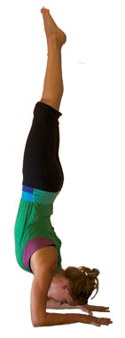 Feathered Peacock Pose	Pincha Mayurasana	feathered-peacock-pose.jpg