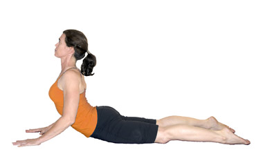 Yoga Cobra Pose	Bhujangasana	yoga-cobra-pose.jpg