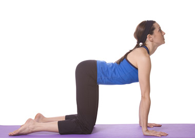 Yoga Cow Pose	Bitilasana Pose	yoga-cow-pose.jpg