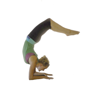 Scorpion Pose	Vrschikasana Pose	yoga-scorpion-pose.jpg